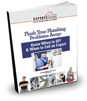 flush your plumbing Problems away book